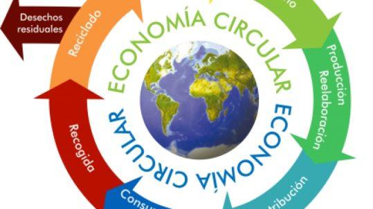 La Economía Circular segmentada en categorías