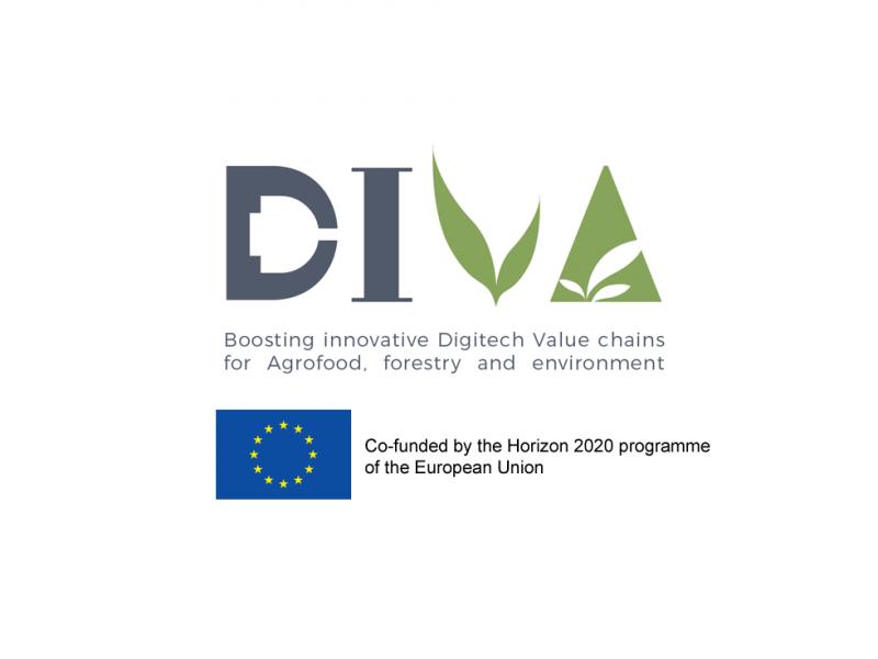 Riego Inteligente para Proyecto DIVA Diseño de producto, desarrollo, I+D+i, innovación, ingeniería, consultoría.